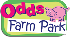 Odds Farm Park Promo Codes